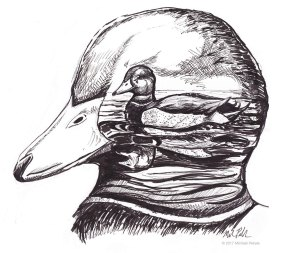 The Duck inside the Duck Head pen and ink illustration