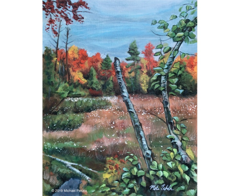 drawing_kennebunk_foliage