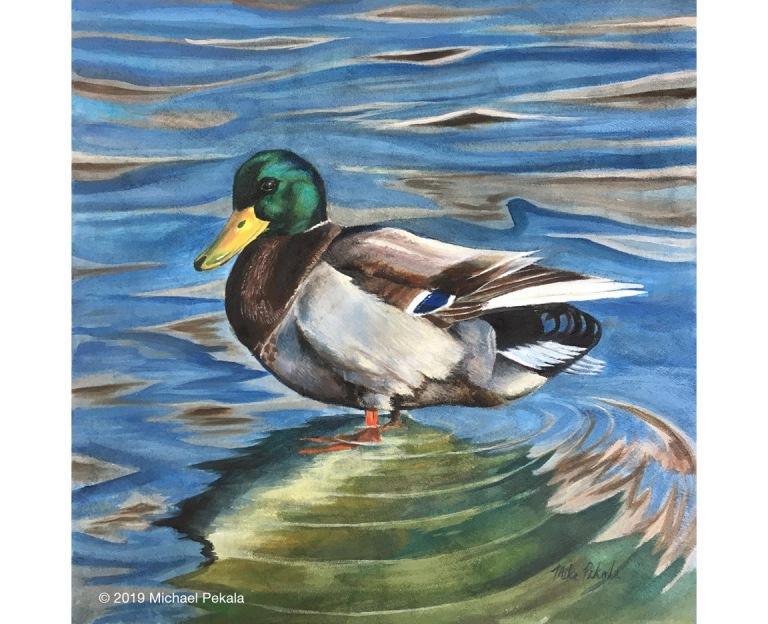 painting_duck