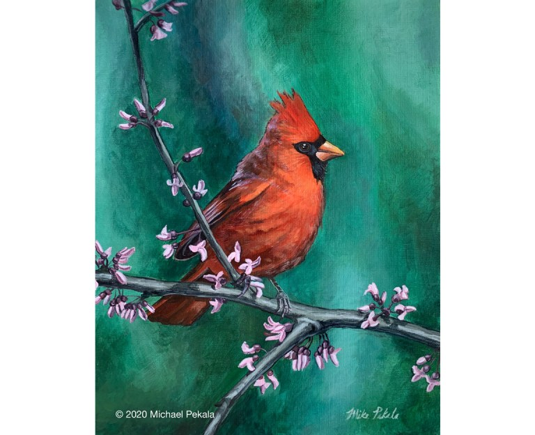 drawing_cardinal_painting_2