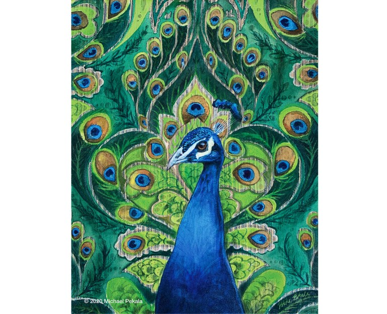 drawing_peacock_painting